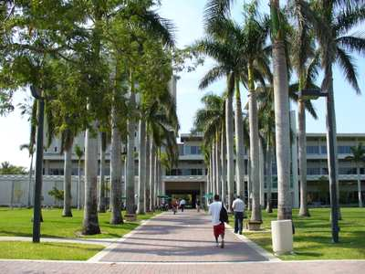 These Are The 7 Best Colleges For Liberal Arts Majors In Florida For 2019